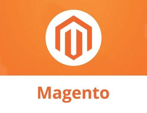 Magento website security